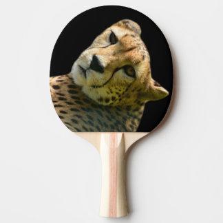 Animal wild cheetah jungle zoo photo ping pong paddle