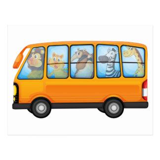 Animals and school bus postcard