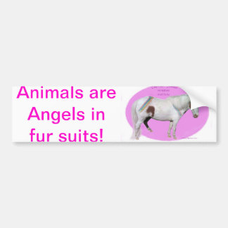 Animals are angels in fur shuts (w/Rainbow Cherry) Bumper Sticker