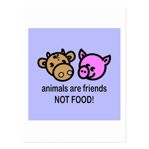 Animals are friends postcard