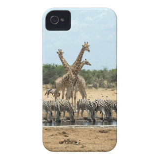 Animals at a waterhole Case-Mate iPhone 4 case