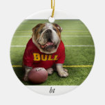 Animals_Dogs_Funny_dog_018014_, bt Christmas Tree Ornaments