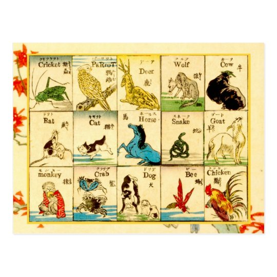 Animals labelled in Japanese & English Postcard