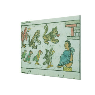 Animals of the Aztec Emperor Canvas Print