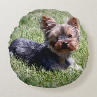 Animals Pets Dog Adorable Yorkie Round Pillow