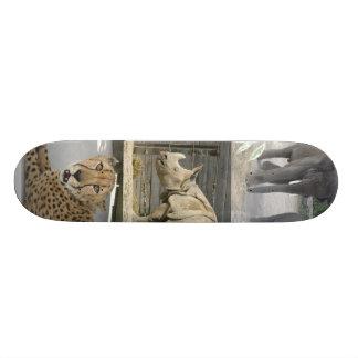 animals skate board decks
