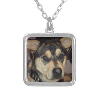 Animals Square Pendant Necklace