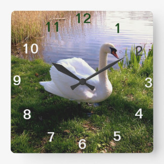 Animals Square Wall Clock