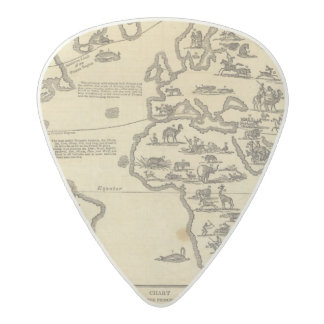 Animals World Acetal Guitar Pick