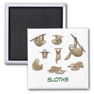 Animated Sloths Magnet