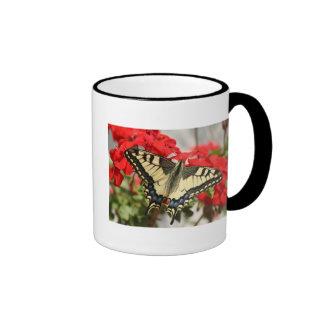 Anise Swallowtail Coffee Muf Ringer Mug