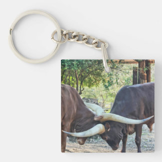 Ankole Cattle Single-Sided Square Acrylic Key Ring