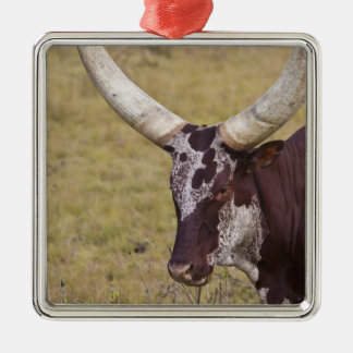 Ankole-Watusi breed of cattle Christmas Ornament