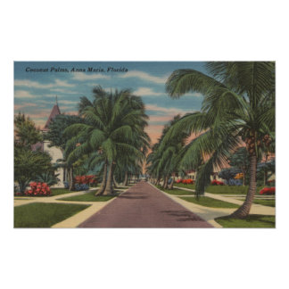 Anna Maria, Florida - View of Palms Along Street Poster