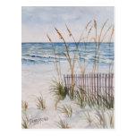 Anna Maria Island Beach Postcards