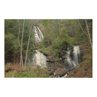 Anna Ruby Waterfalls Wood Canvas