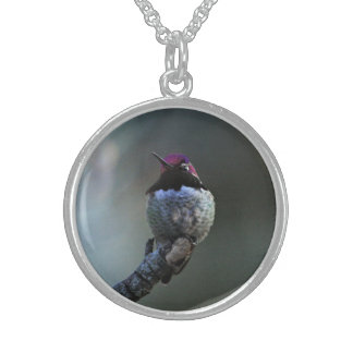 Anna s Hummingbird Sterling Silver Necklace