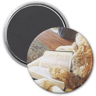 annabelle 7.5 cm round magnet
