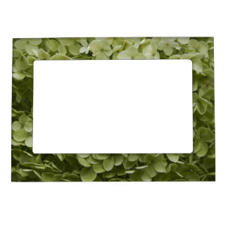 Annabelle Hydrangea Picture Frame Magnetic Photo Frames