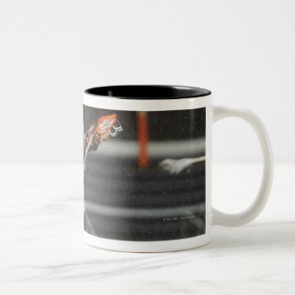 ANNAPOLIS, MD - AUGUST 27:  Kevin Unterstein #0 Two-Tone Mug