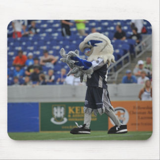 ANNAPOLIS, MD - JUNE 25:  Hawk-Eye cheers at the Mouse Pad
