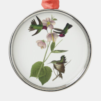Anna's Hummingbird by Audubon Silver-Colored Round Decoration
