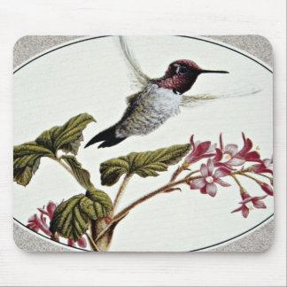 Anna's hummingbird  flowers mousepad