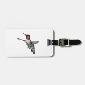 Anna's Hummingbird Luggage Tag