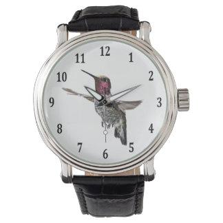 Anna's Hummingbird Watch