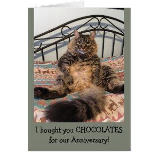 Anniversary Chocolates Kimber Cat Anniversary Card