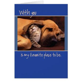 Anniversary, Dog and Kitten Card