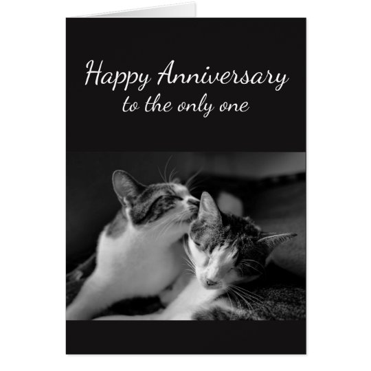 Anniversary Loved One Cat Humour Card