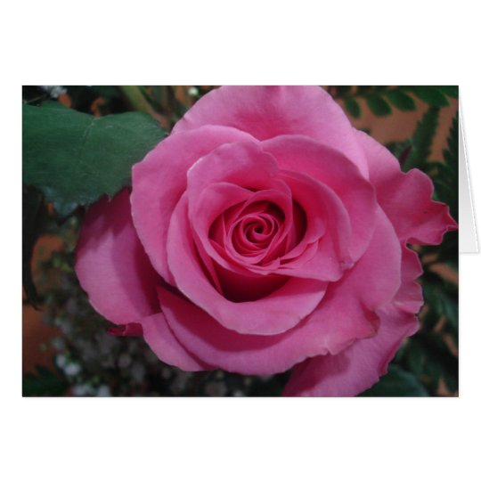 Anniversary of a Death Pink Rose series1 Card