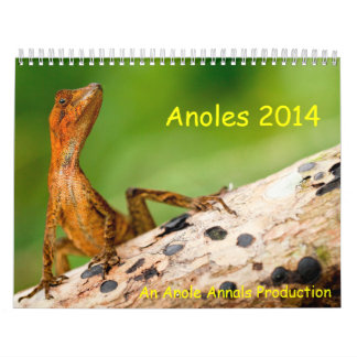 Anoles 2014 wall calendar
