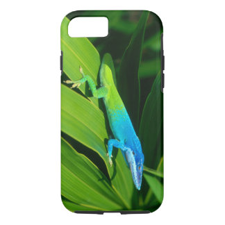 Anolis allisoni iPhone 7 case