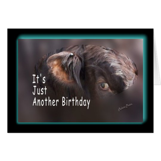 Another Birthday-customise it Card