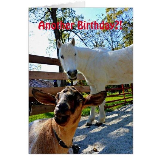 Another Birthday?! With Pony and Goat Card
