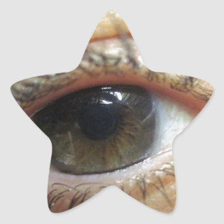 Another Eye Star Sticker