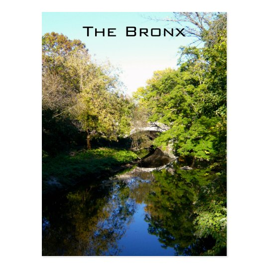 Another Side of the Bronx Postcard