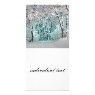 another winter wonderland  3 custom photo card
