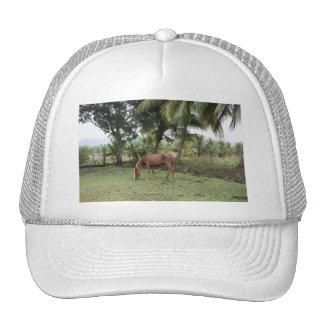 Anse Ger1 Trucker Hat