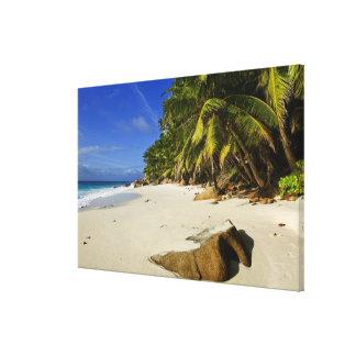 Anse Victorin Beach Canvas Print