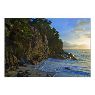 Ansi Victorin Beach 2 Art Photo
