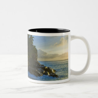 Ansi Victorin Beach 2 Two-Tone Coffee Mug