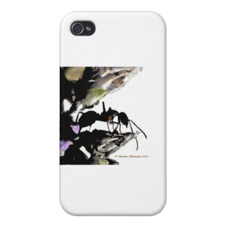 ant   a iPhone 4 cover
