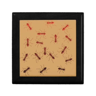 Ant antics. gift box