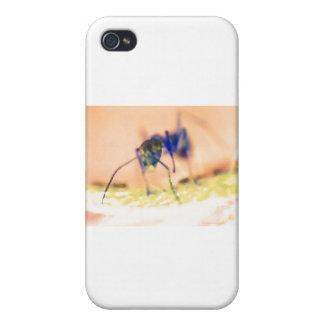 ant d iPhone 4 cases