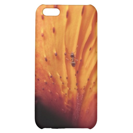 Ant On You iPhone 5C Covers