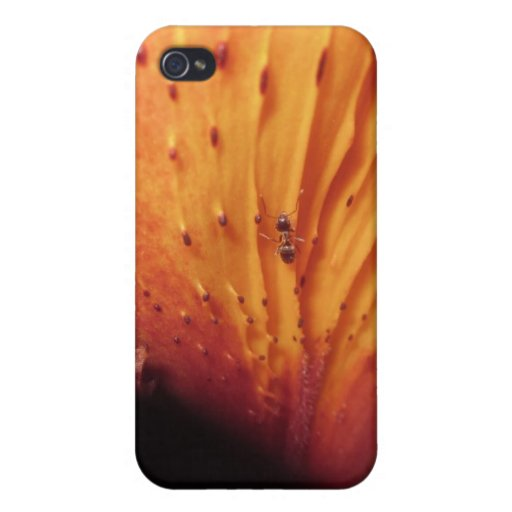 Ant On You iPhone 4/4S Cases
