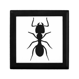 Ant Small Square Gift Box